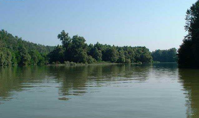 Kirándulás a Gemenci Erdőben, hajózás a Dunán 3